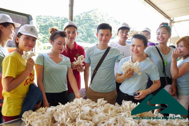 Du lịch nông nghiệp: hướng đi mới cho du lịch Mộc Châu